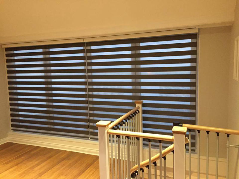 phoenix blinds Duorol roller blinds